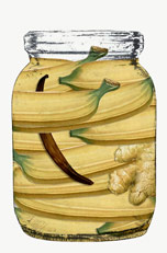 3-vasetti_taprobanana_aristortele_big
